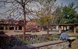 Springtime In The Hetzel Union Building Court, The Pennsylvania State University Postcard