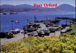 Port Orford Postcard