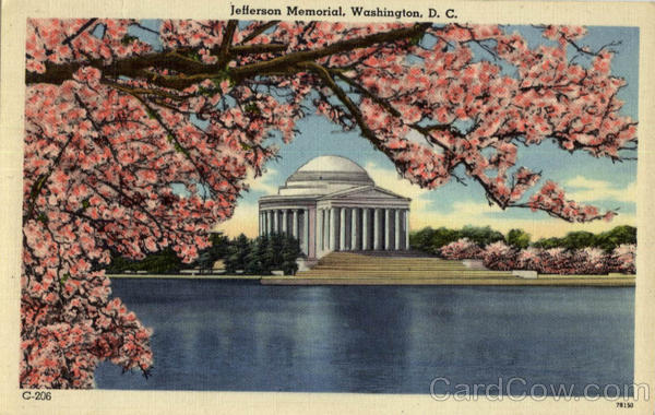 Jefferson Memorial - Cherry Blossoms Washington District of Columbia