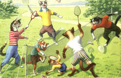A game of Badminton