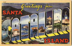 Greetings from Catalina Island Postcard