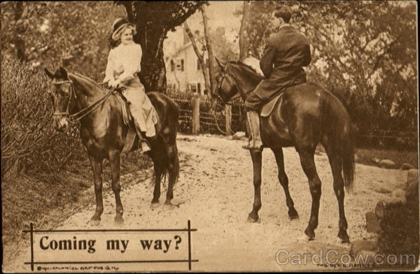 Coming My Way? Romance & Love Horses