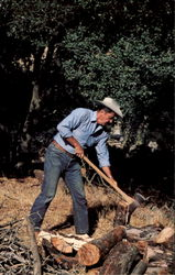 Ronald Reagan Likes To Relax By Chopping Wood