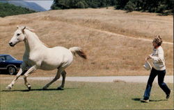 Nancy Reagan Enjoys President Regan's White Horse