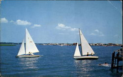 Sail Boats Racing On The Large Bay
