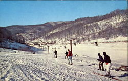 Colorful Panoramic View Of The Ski Slope
