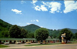 Star Motel, U. S. 19 Postcard