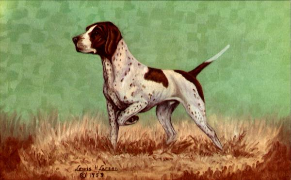 The Pointer Dogs