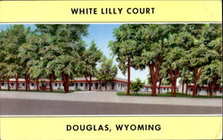 White Lilly Court