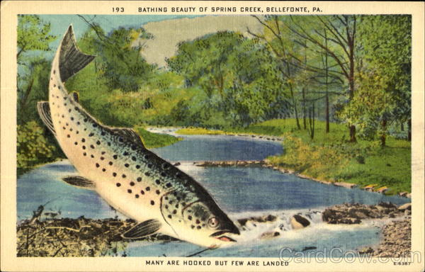 Bathing beauty of spring creek bellefonte pa for Spring creek pa fishing report