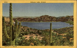 Sahuaro Lake
