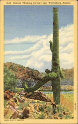 Famous Walking Cactus