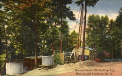Natural Crude Oil Drilling Rig