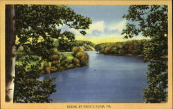 Scene At Peck's Pond
