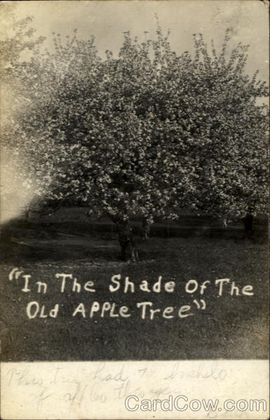 In The Shade Of The Old Apple Tree Fruit