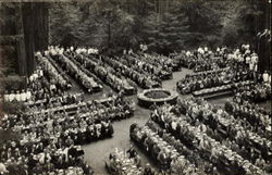 Bohemian Club Dinner at Bohemian Grove