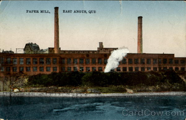 term paper mill canada