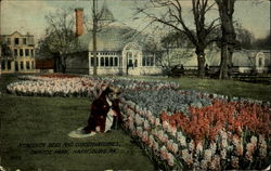 Hyacinth Beds And Conservatories, Capitol Park