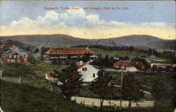 Chamard's Lorne House And Cottages Postcard