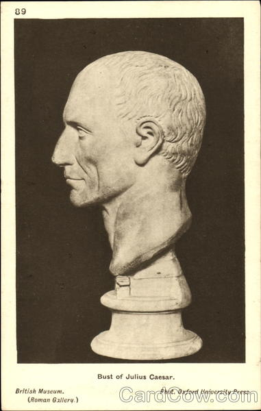 Bust Of Julius Caesar Art