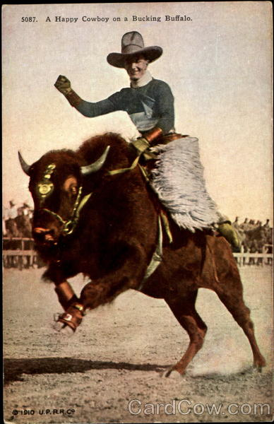 A Happy Cowboy On A Bucking Buffalo Cowboy Western