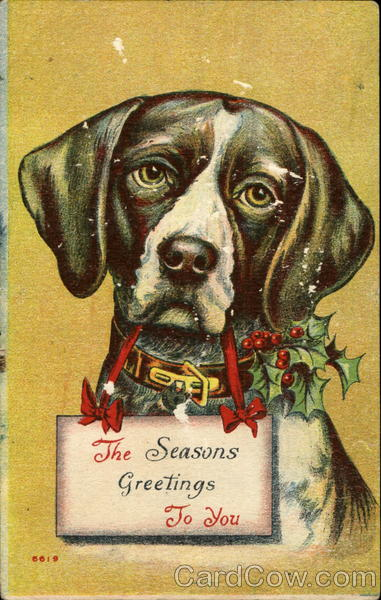 The Seasons Greetings To You Dogs