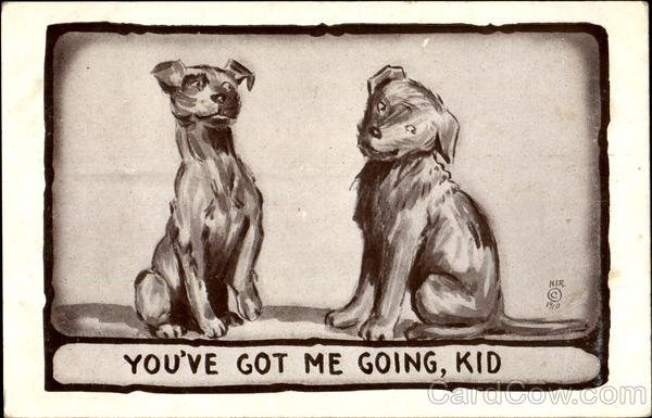 You'Ve Got Me Going Kid Dogs