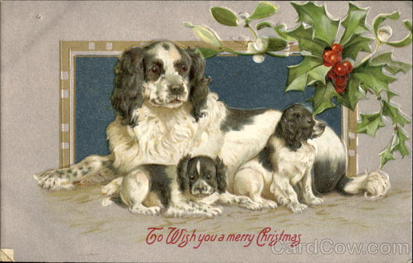 To Wlish You A Merry Christmas Dogs
