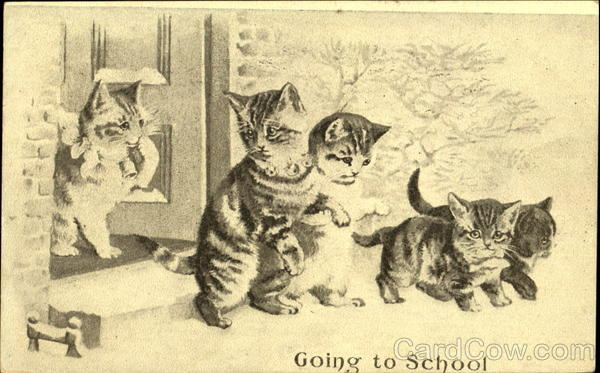 Going To School Cats