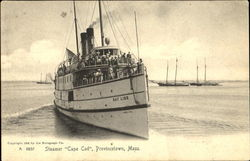 Steamer Cape Cod Postcard
