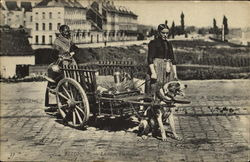 Belgique Dog Cart