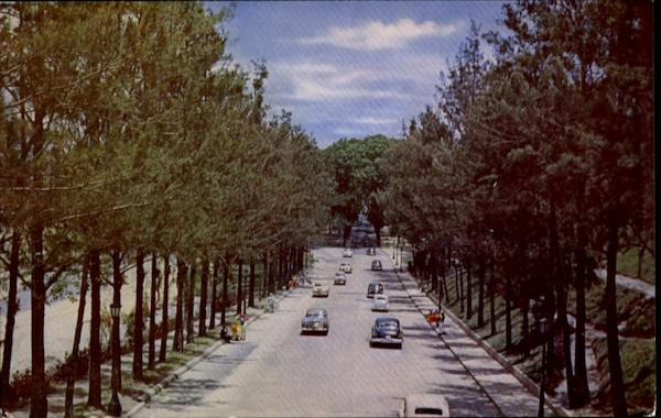 Main Avenue Through Los Caobos Park In Caracas Venezuela