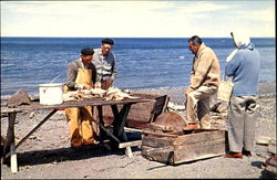 Fisherman Splitting Codfish On The Beach, Route 6 Postcard