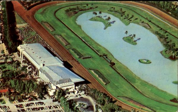 Aerial View Of Infield Lake Miami Florida