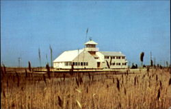 South Jersey Wetlands Institute