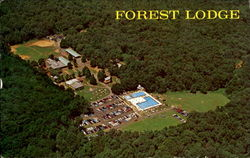 Forest Lodge, 11 Reinman Road