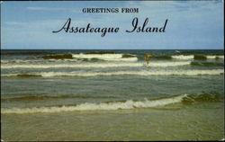 Greetings From Assateague Island
