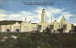 The University Of Montreal
