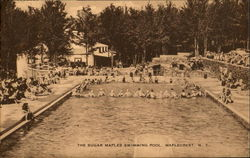 The Sugar Maples Swimming Pool