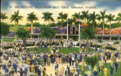 The Paddock, Gulfstream Race Track
