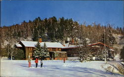Winter At The Cardy-Alpine Inn Postcard