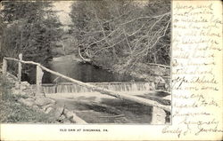 Old Dam At Dingmans