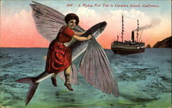A Flying Fish Trip To Catalina Island