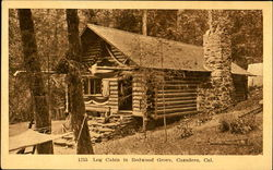 Log Cabin In Redwood Grove