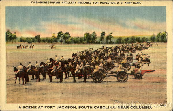 Horse Drawn Artillery Prepared For Inspection, U. S. Army Camp Columbia South Carolina
