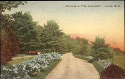Driveway To The Aspinwall