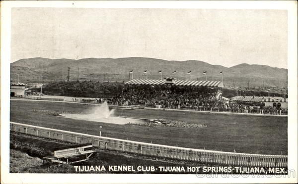 Tijuana Kennel Club, Tijuana Hot Springs Mexico