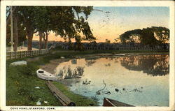 Cove Pond Postcard