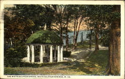 The White Sulphur Spring Postcard