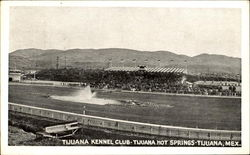 Tijuana Kennel Club, Tijuana Hot Springs